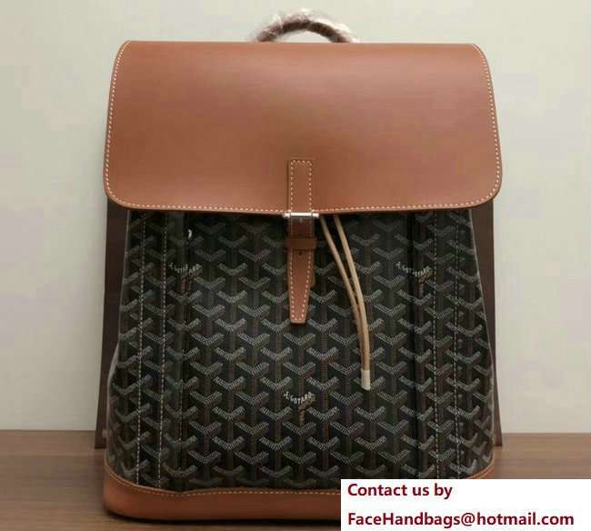 Goyard Alpin Backpack Bag Brown